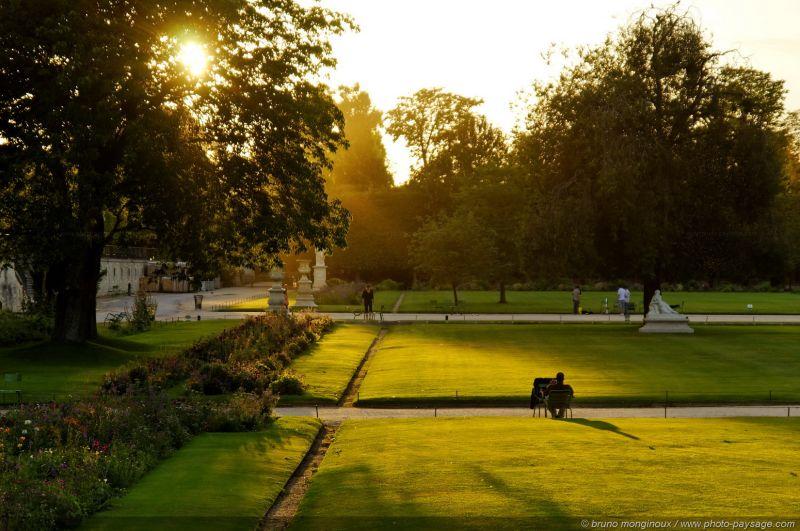 les marronniers du jardin des tuileries